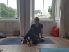 ananta-yoga-wicklow-10