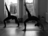 ananta-yoga-wicklow-11