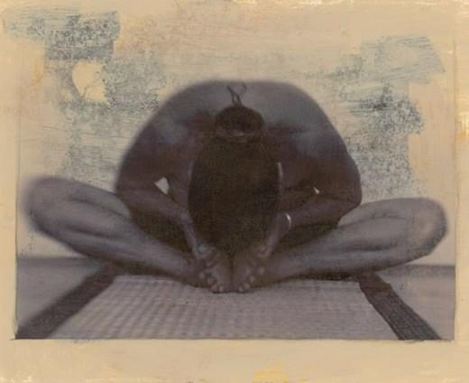 Vinyasa Krama Yoga Practitioner and Teacher Training Programme