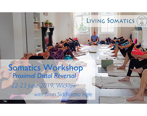 Living Somatics Workshop