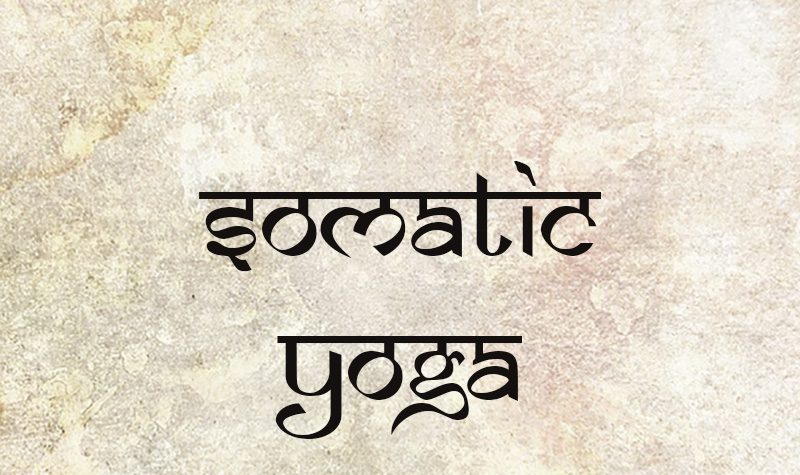 Somatic Yoga Wicklow