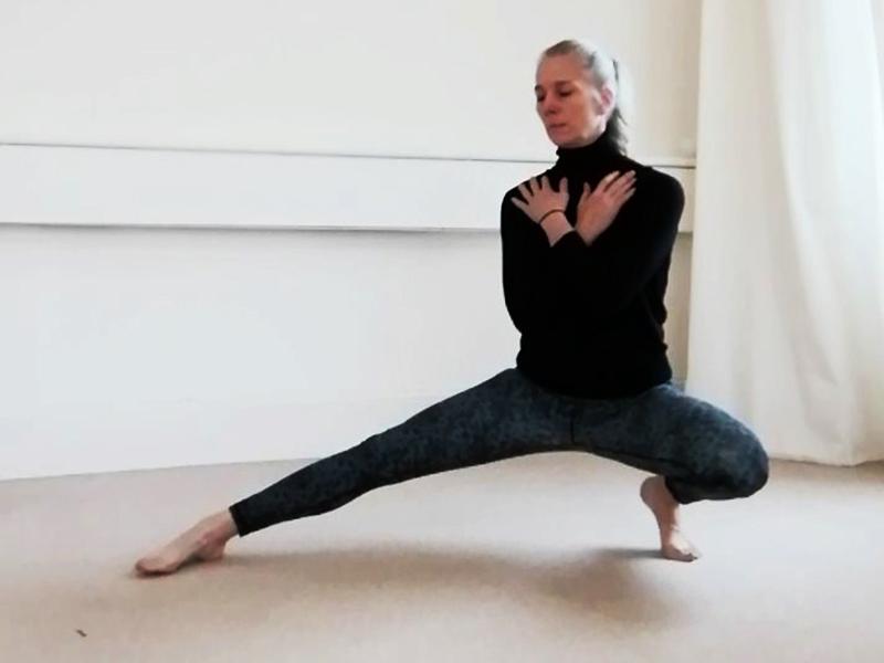 Shadow Style Hatha Yoga